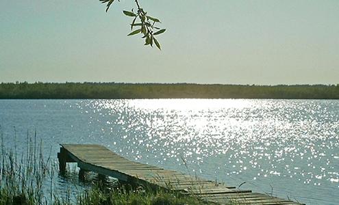 Steg in einem See bei Sonnenschein