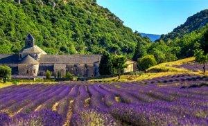 Umgebung der Villa Seillans in der Provence: Ausflugsziele und Sehenswürdigkeiten