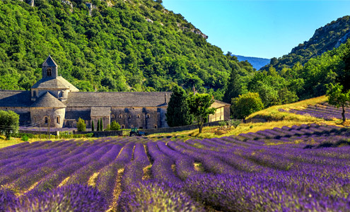 Surroundings of Villa Seillans in Provence: Places of interest and excursions