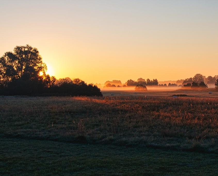 Die wunderschöne Landschaft Mecklenburg-Vorpommerns genießen: im Landhaus Dragun kein Problem!